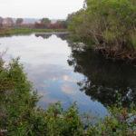 Kasanka Luwombwa River