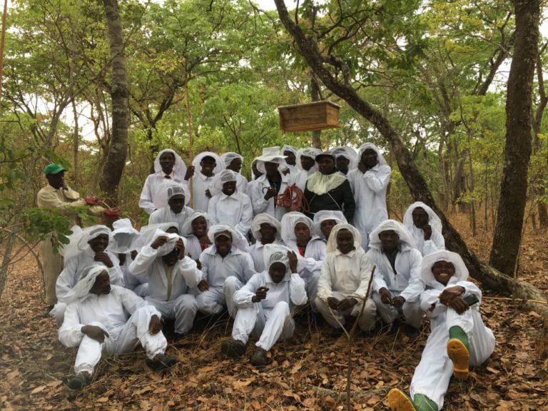 Beekeeping Workshop at KCC