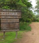 Kasanka Infrastructures